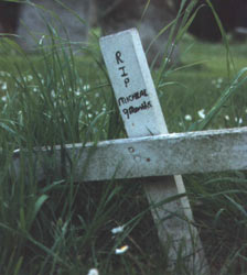RIP micheal aged 9 months - crudely made wooden cross in graveyard